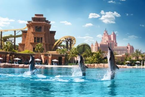 Dolphin bay à Atlantis the Palm