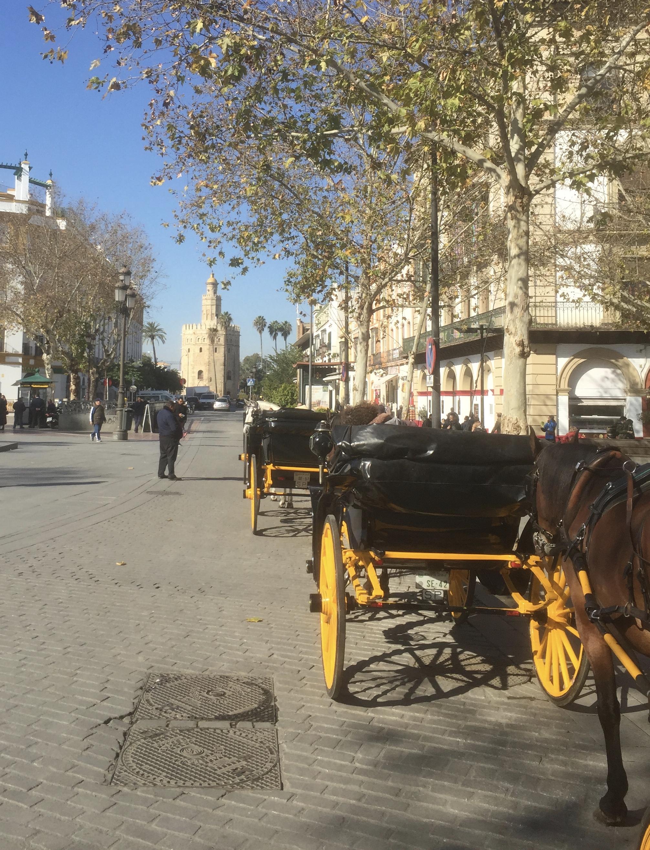Vue vers Torre del Oro depuis le centre
