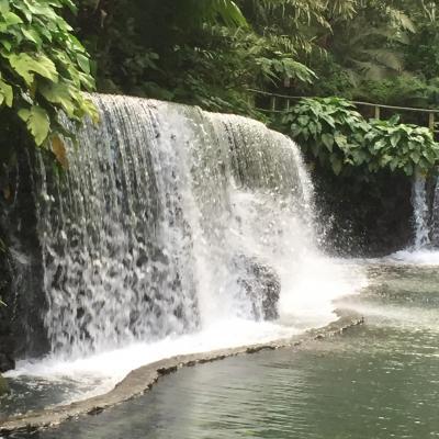 Bato Springs - Laguna (Philippines)