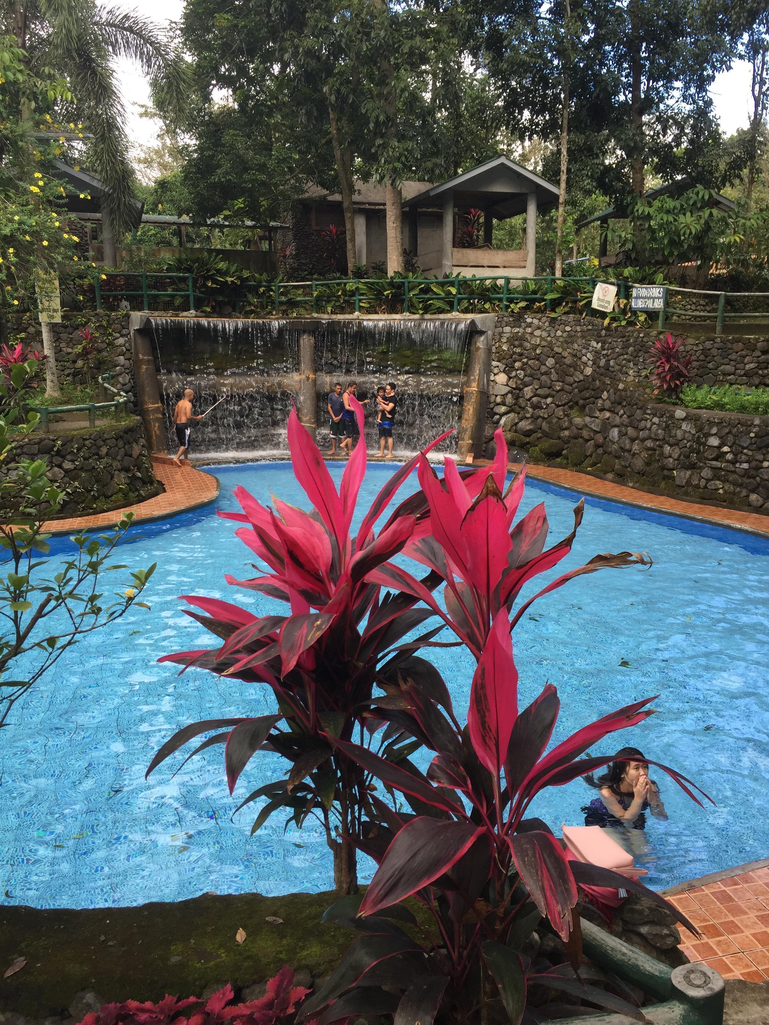 Bato Springs, la piscine