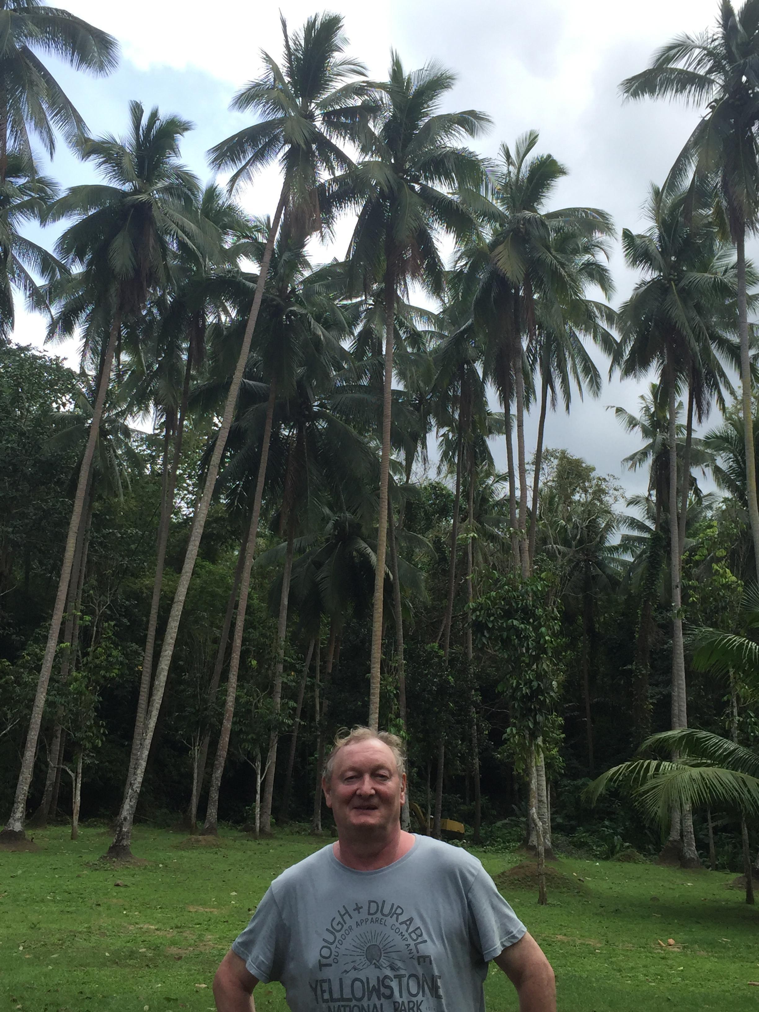 Christian dans les palmiers.
