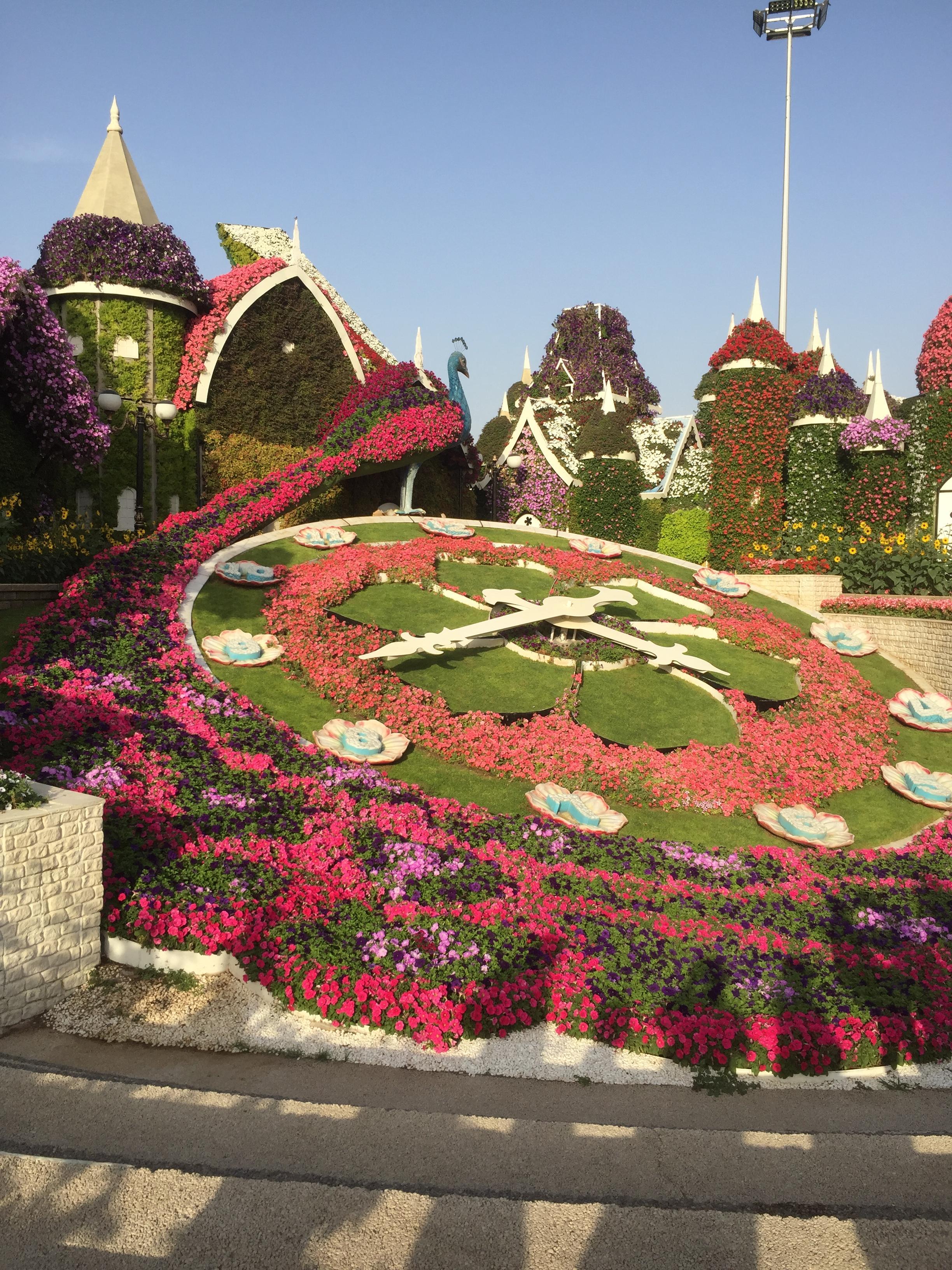 Miracle garden l'horloge
