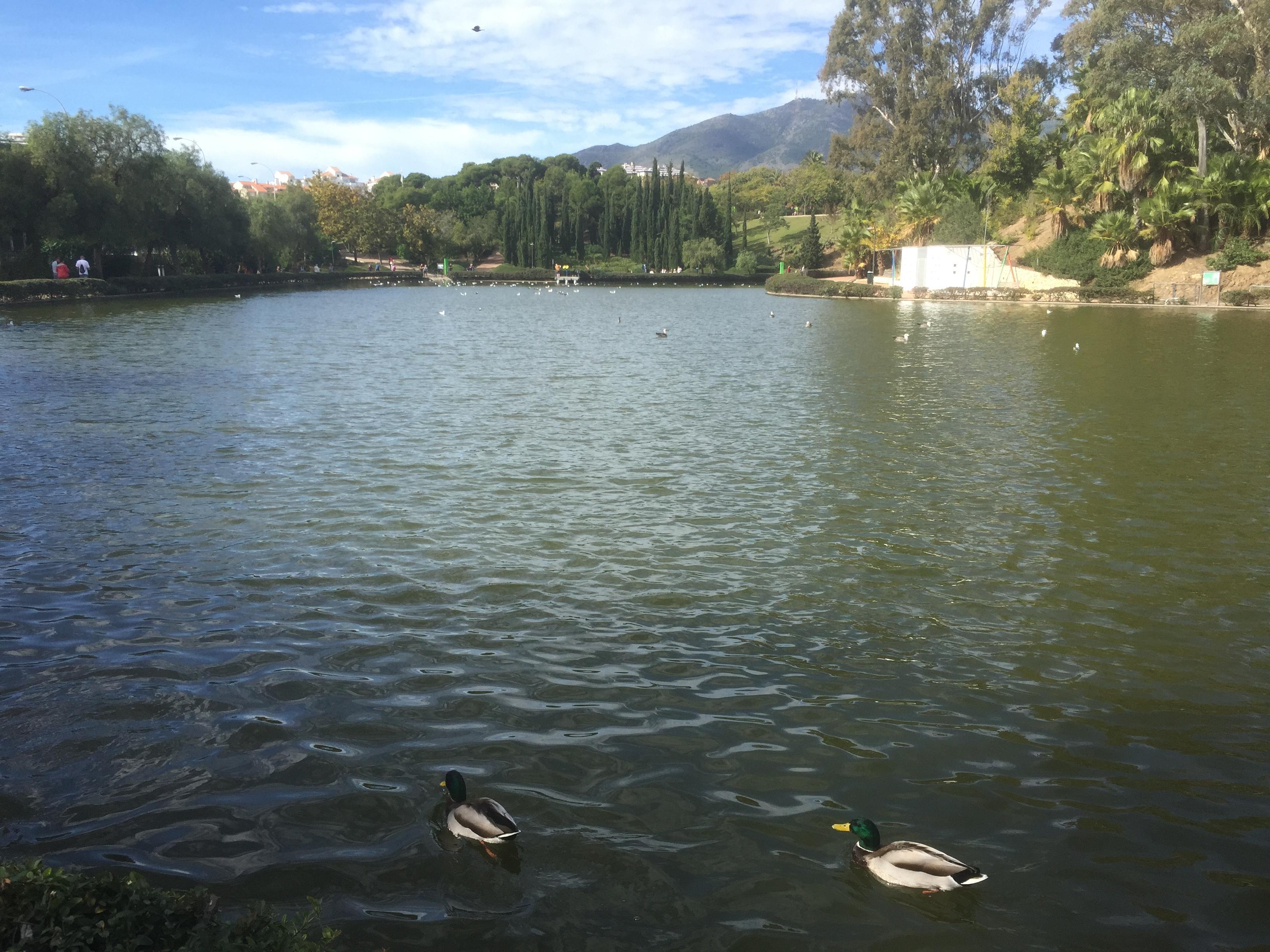 Espace vert à Benalmadena, le lac