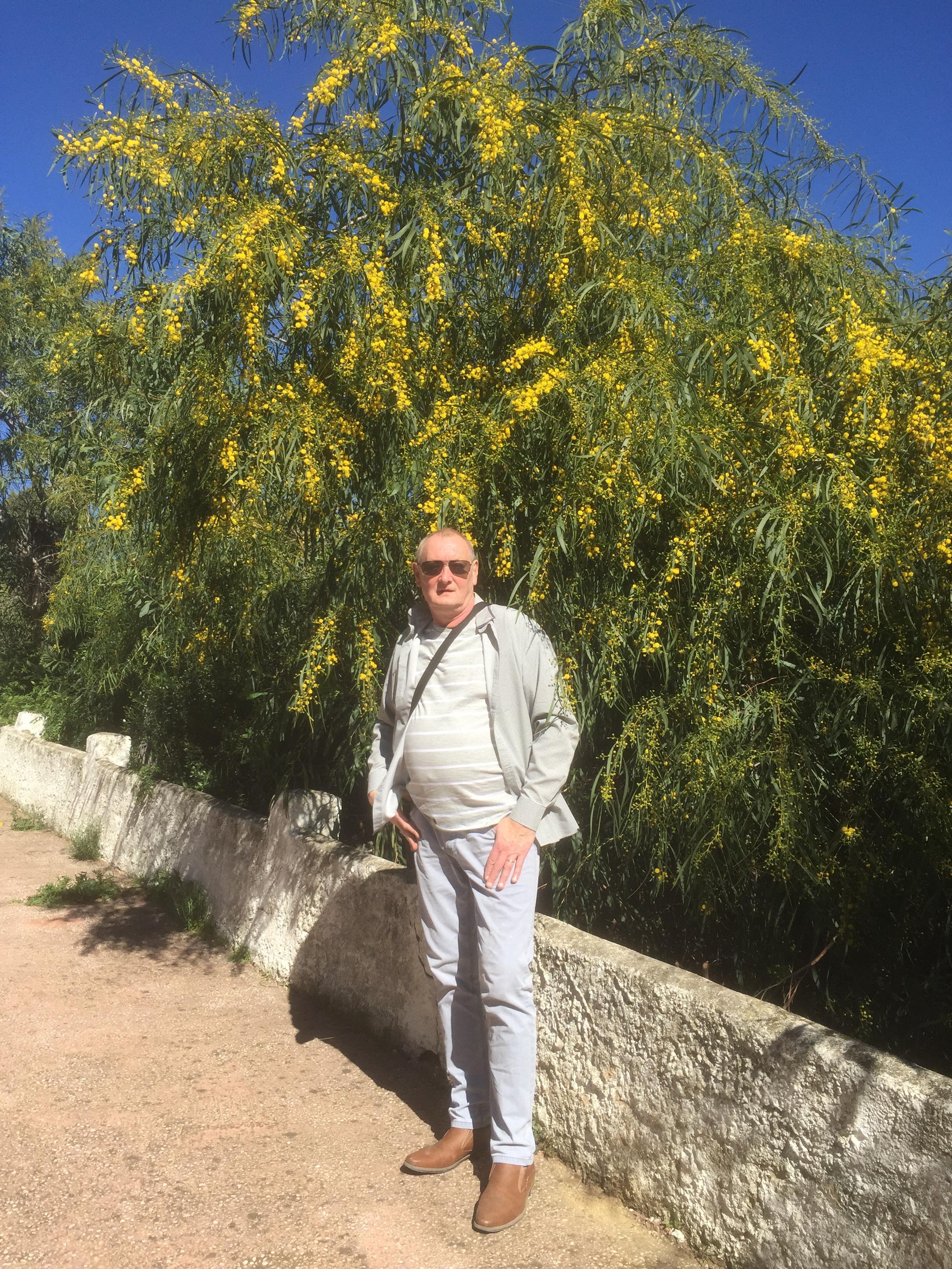 Moi dans les mimosas