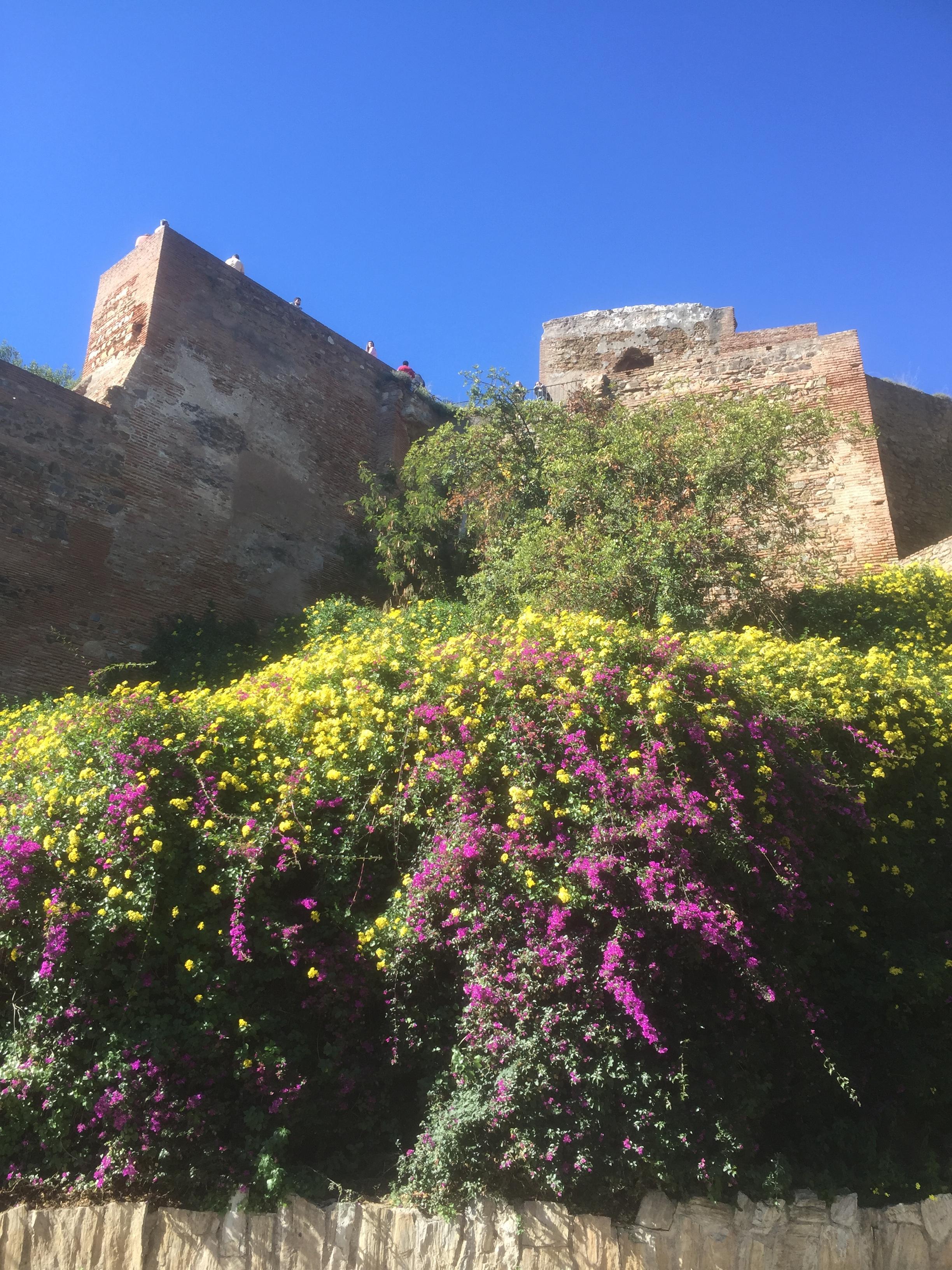 Vue sur la forteresse