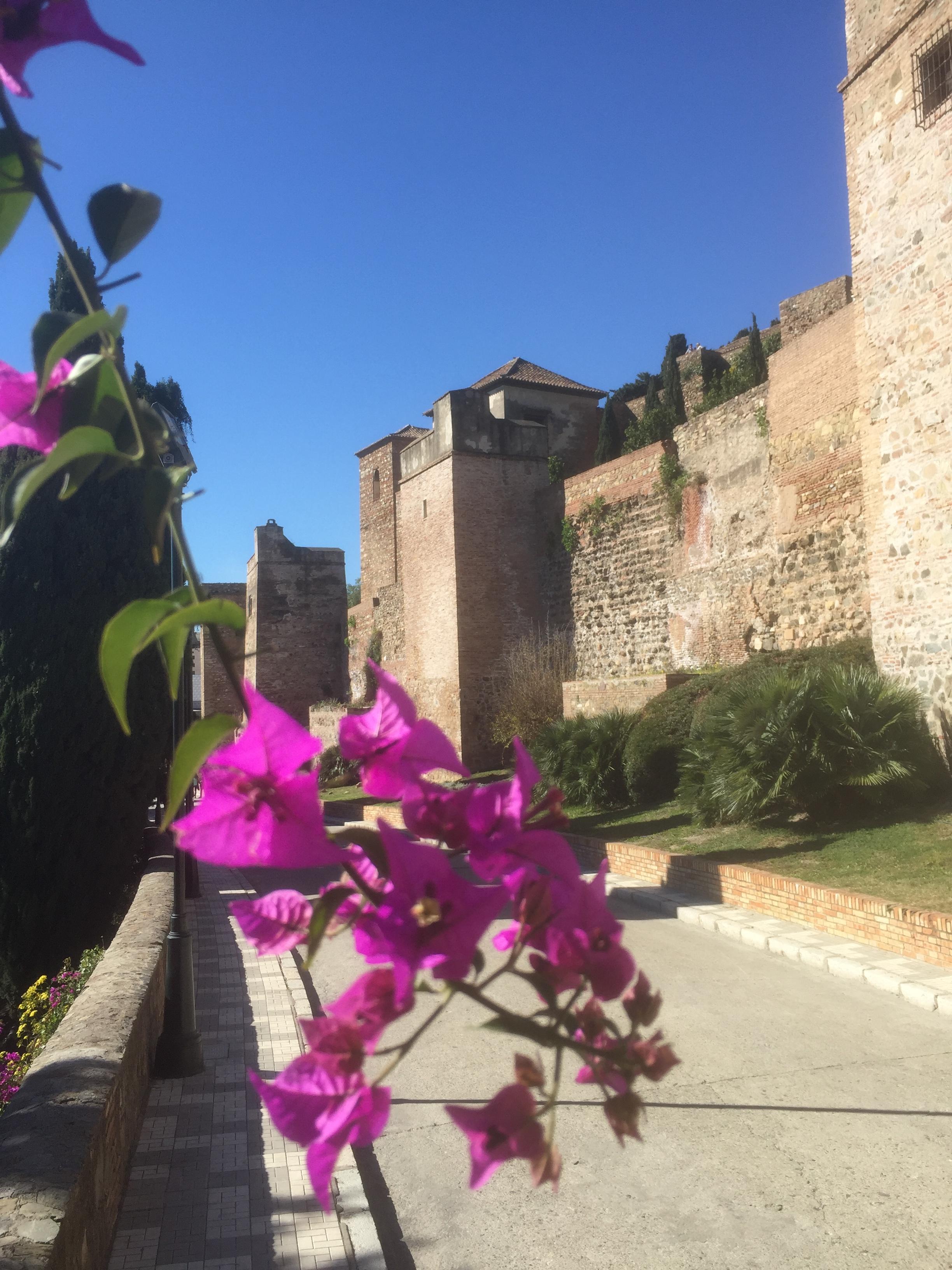 La forteresse d'Alcazaba