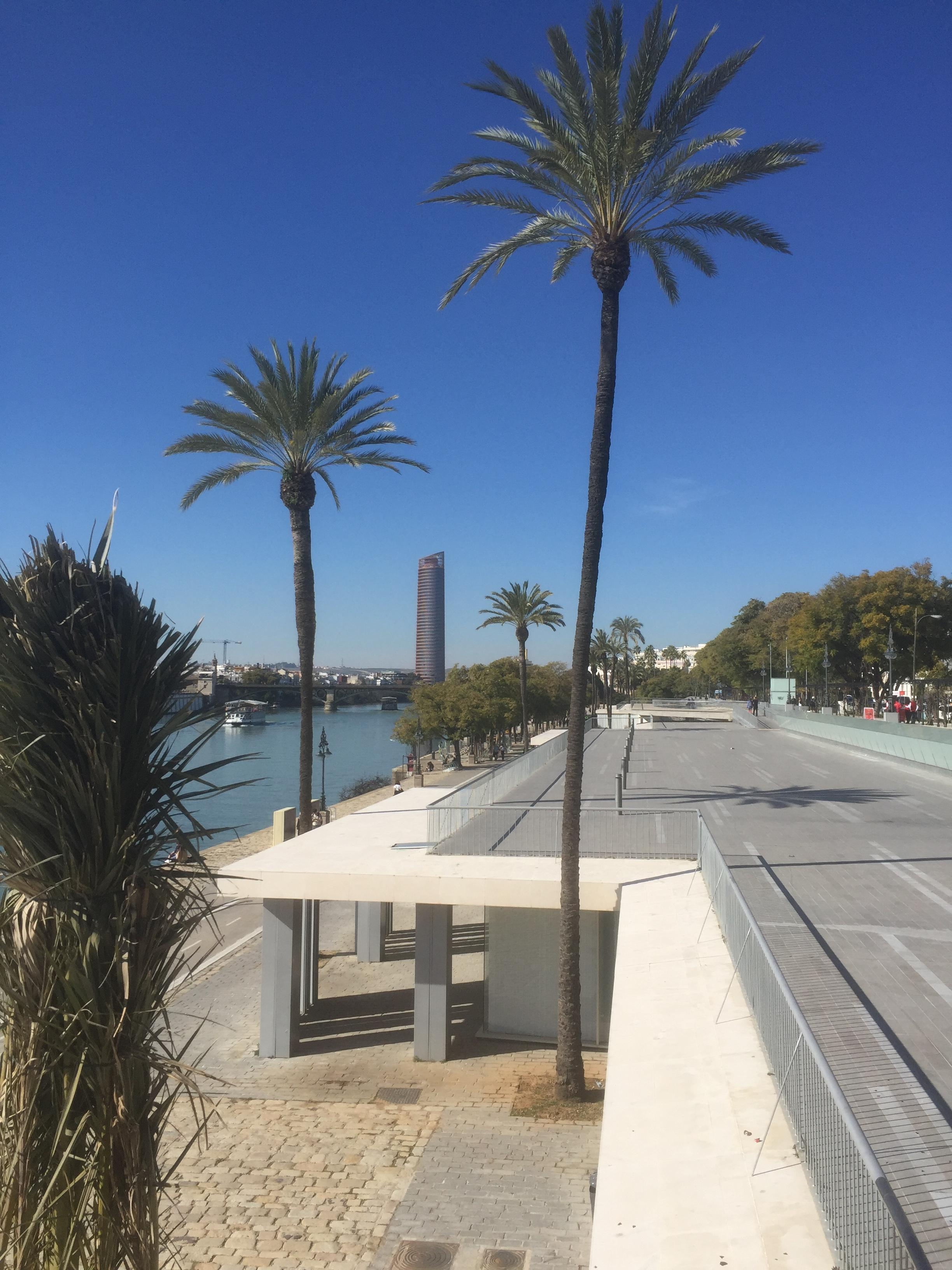 Le Guadalquivir se jette dans l'Océan Atlantique à l'ouest de Gibraltar.