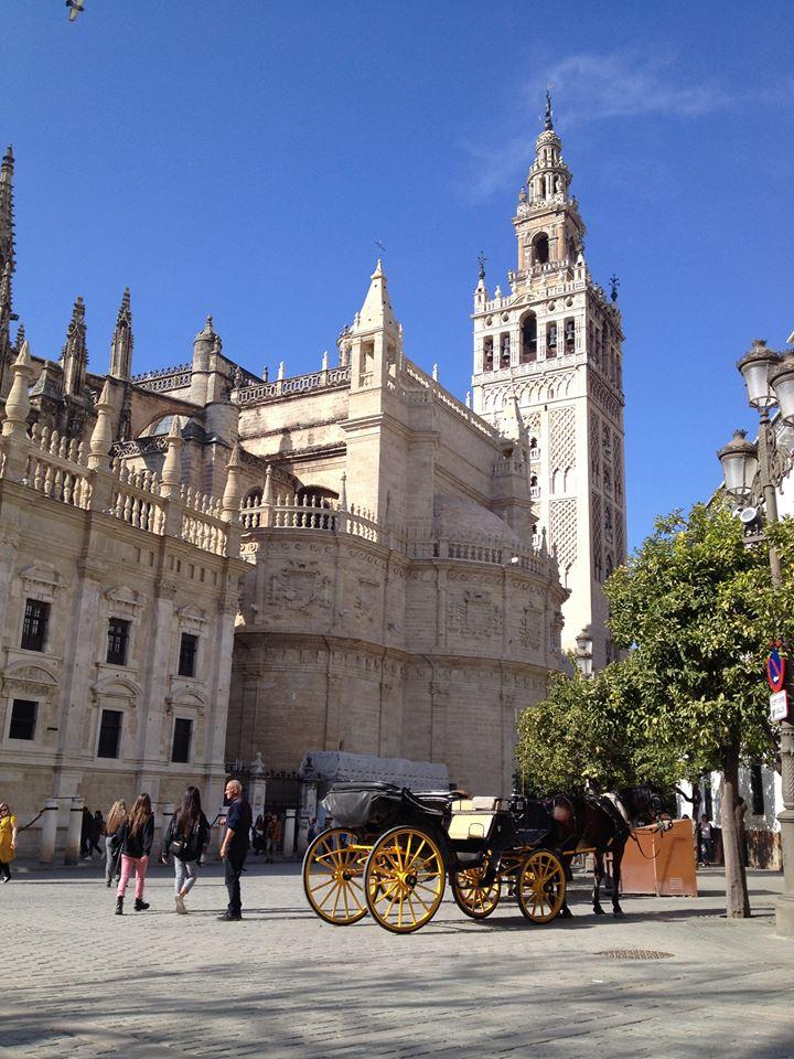 Catedral de Santa Maria de la Sede