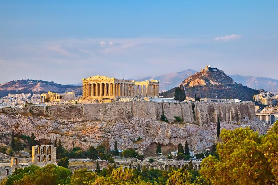Athenes tui