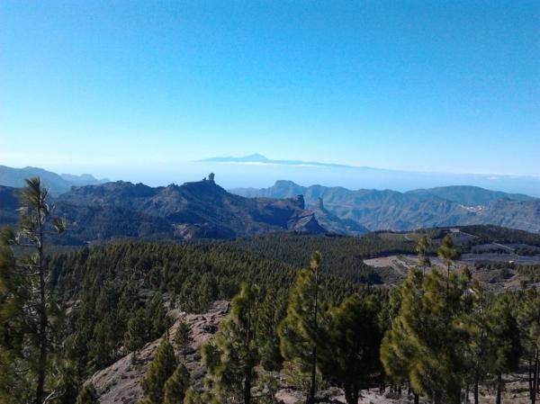 Canaria 2