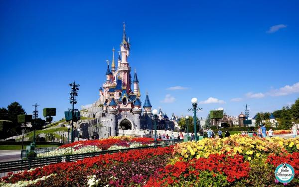 Disney site