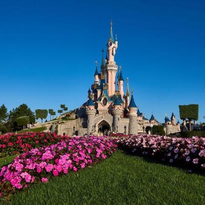 Disney tour img 1225525 145