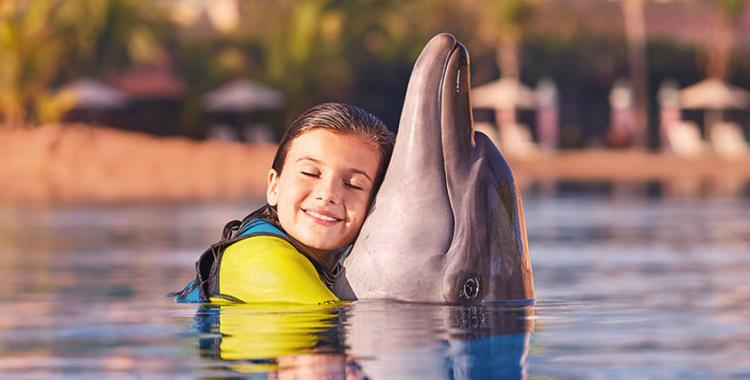 Dolphin hugs 2x1