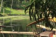 Palakpakin Lake - San Pablo (Philippines)