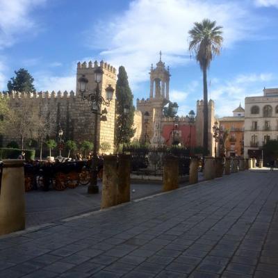 Seville 205